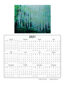 2021 Calendar - Sunshine Variations